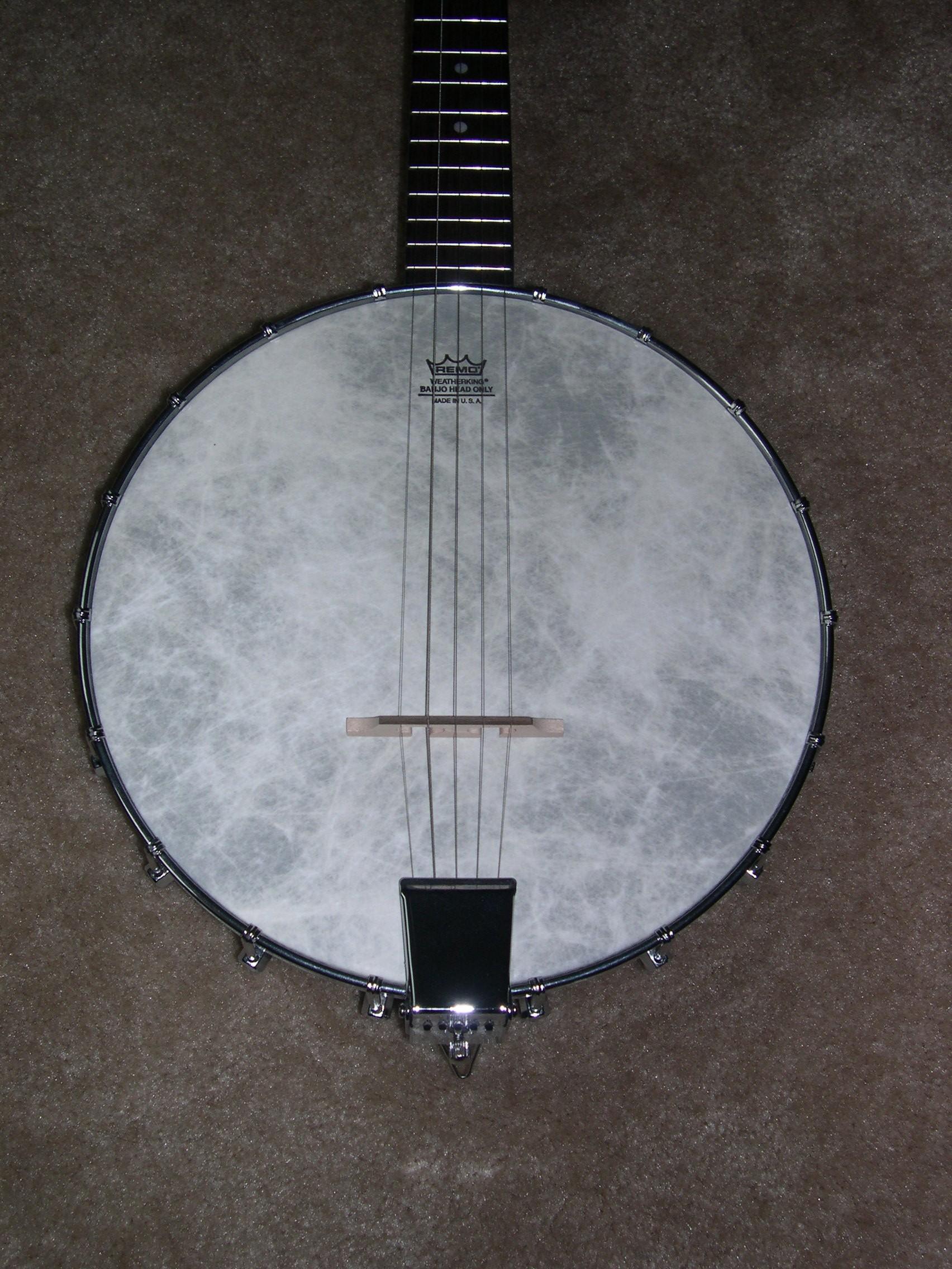 Bozo's Banjo Pages - 2006 Rogue 5-String Banjo