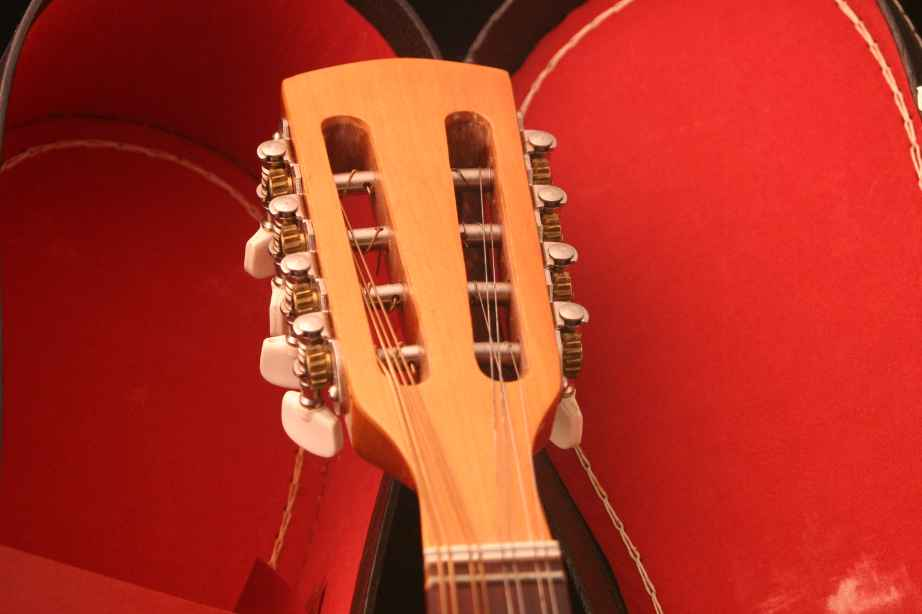 Mexican A-Style Mandolin - Headstock